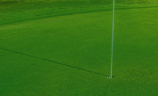 Golf Suncoast Golf Center Amp Academy